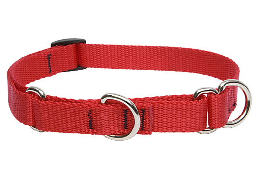 Lupine Martingale