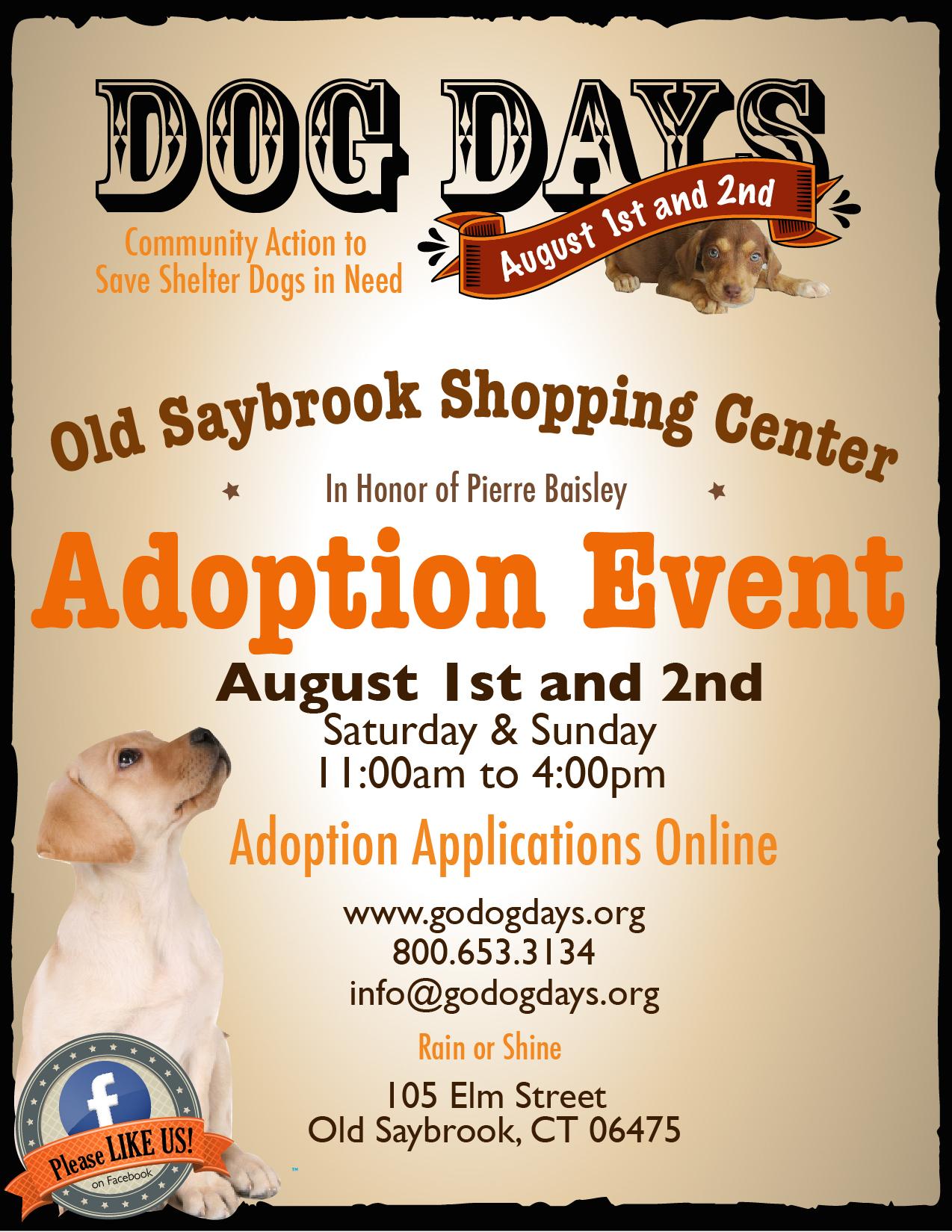 DOG DAYS ADOPTION EVENT – OLD SAYBROOK