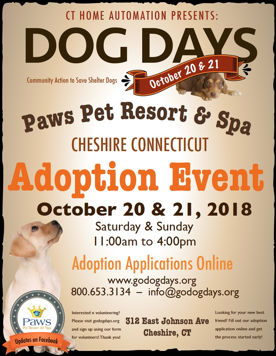 Cheshire Dog Days Event