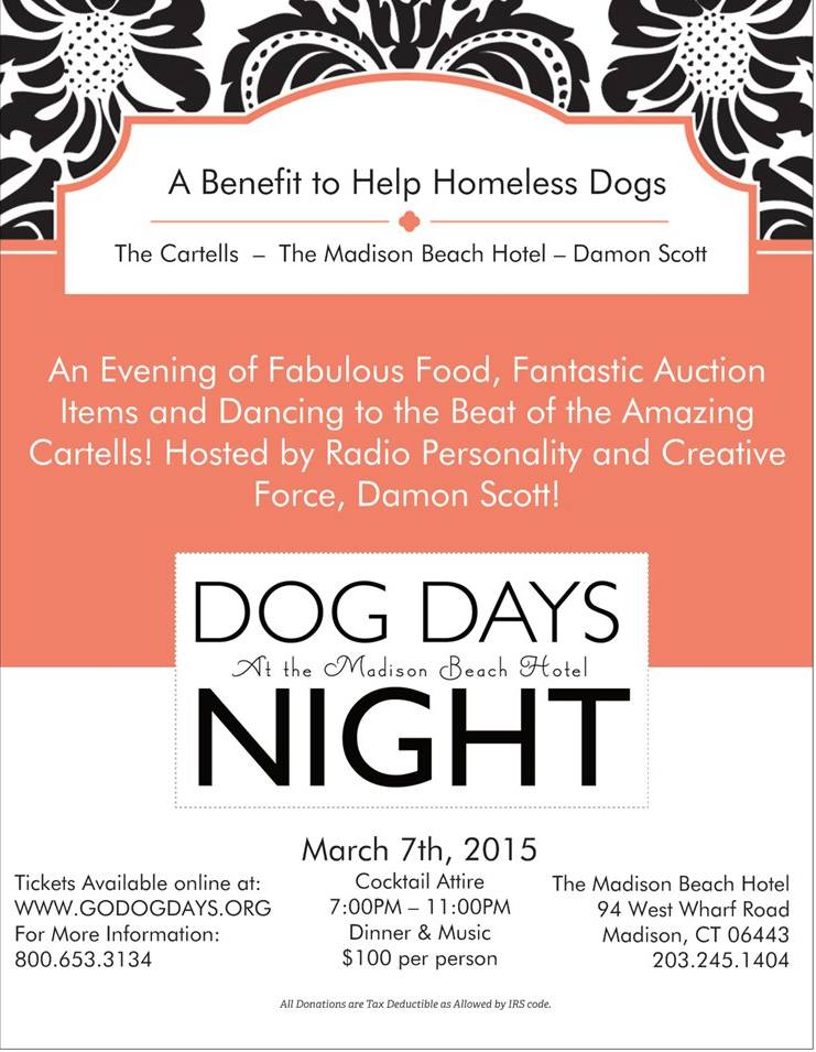 A Benefit For Homeless Dogs
