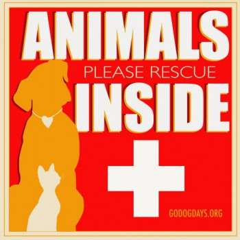 "Window Cling – ""Animals Inside"""