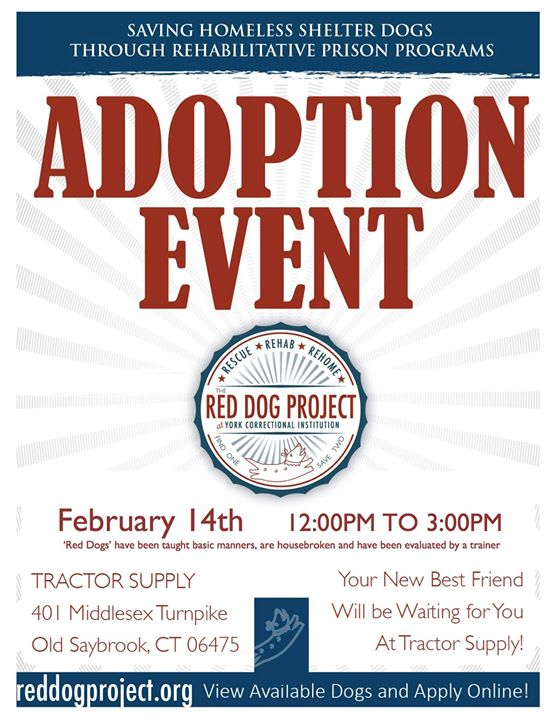 Red Dog Adoption Event