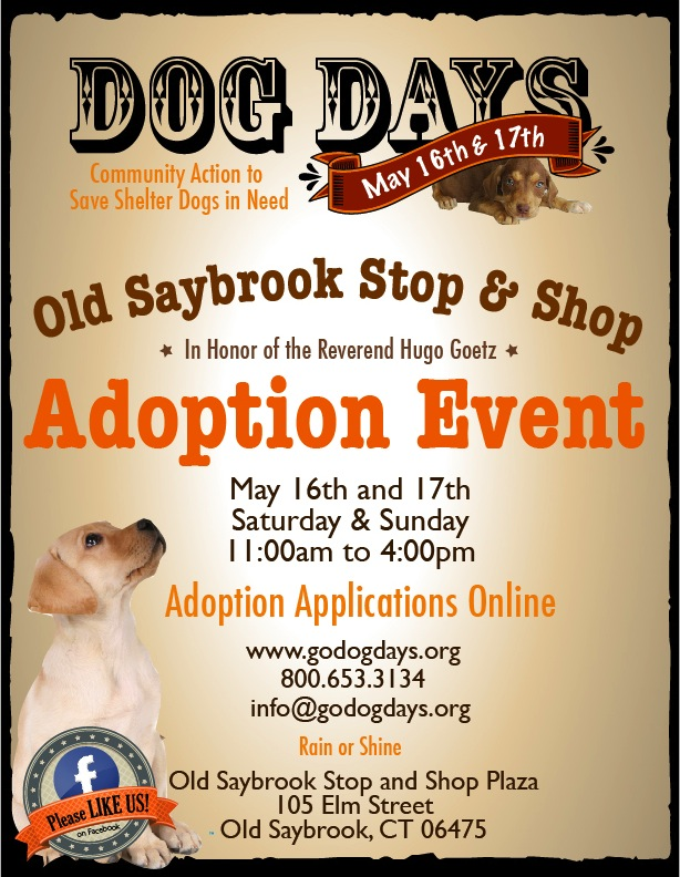DOG DAYS EVENT – OLD SAYBROOK