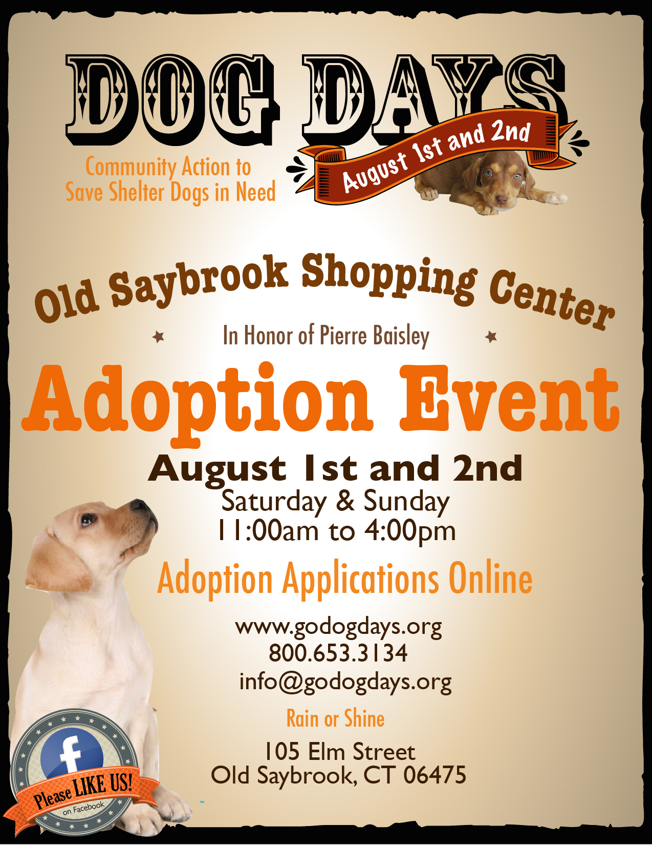 DOG DAYS ADOPTION EVENT – OLD SAYBROOK