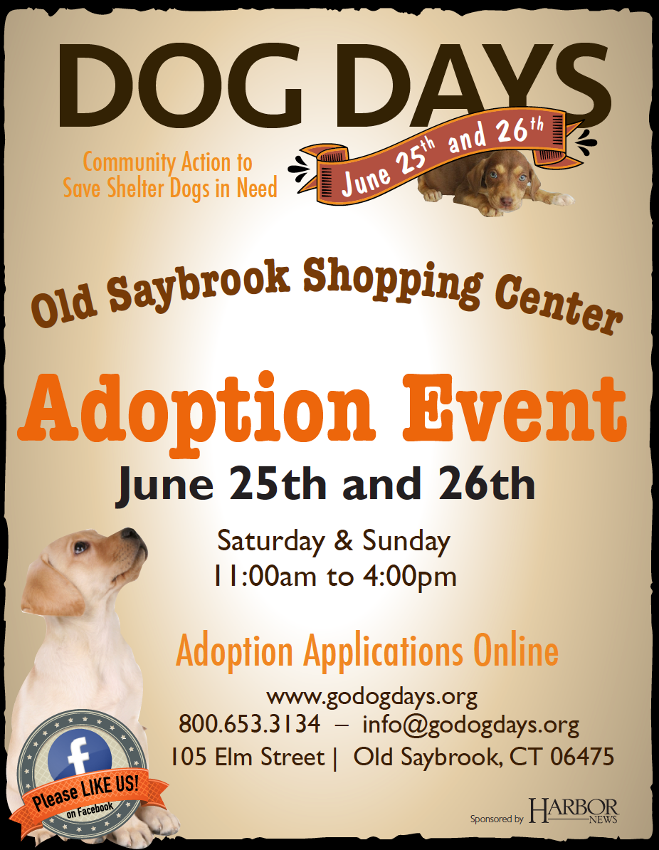 Dog Days Event June 25th And 26th In Old Saybrook!