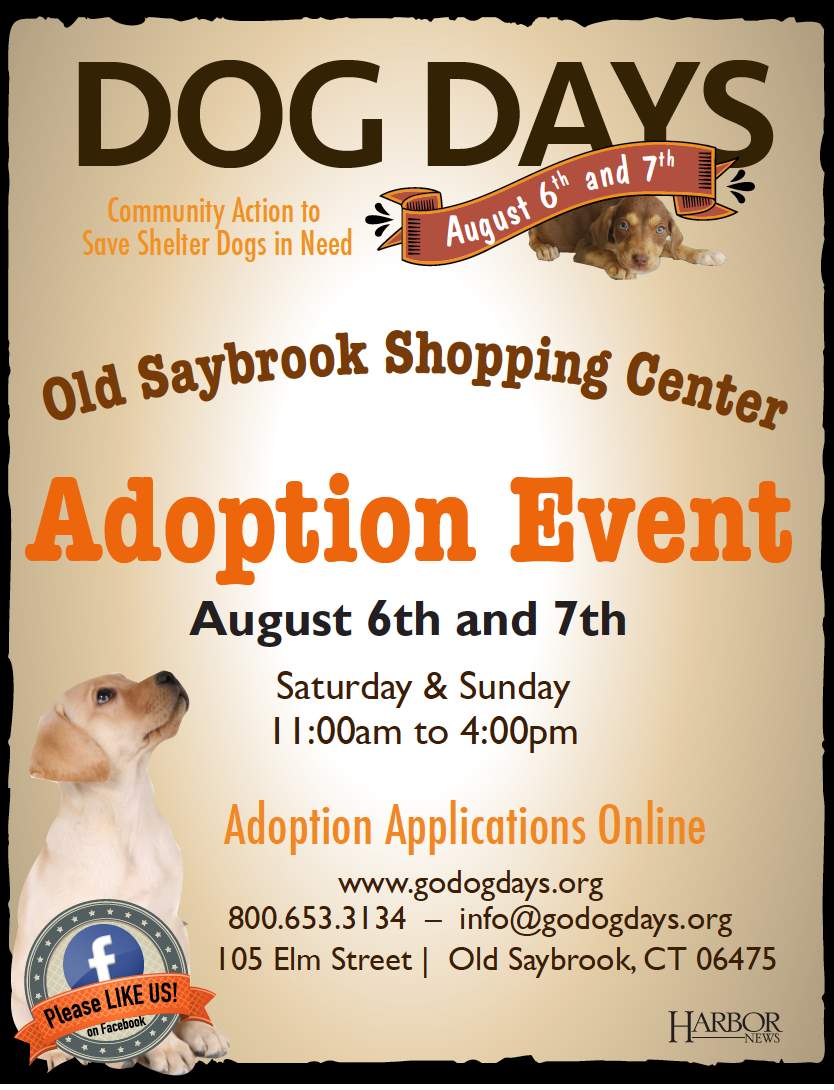 Dog Days Event August 6th And 7th In Old Saybrook!